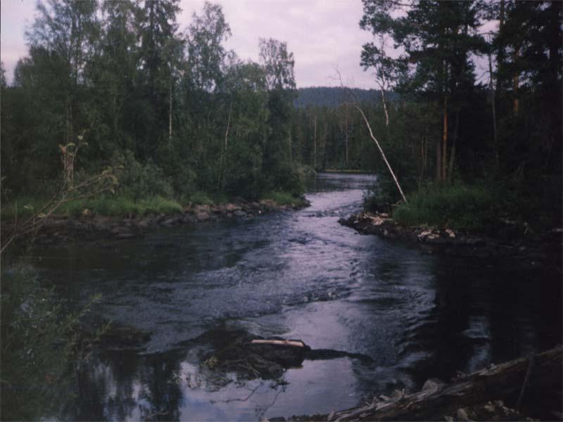 река волома карелия рыбалка